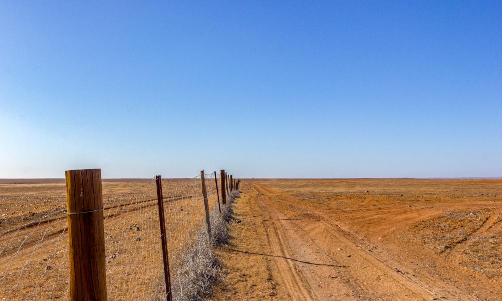 dog fence rural stock image