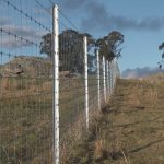 Exclusion fence cluster in NSW high country