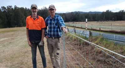 Wolf Rural Fencing NSW