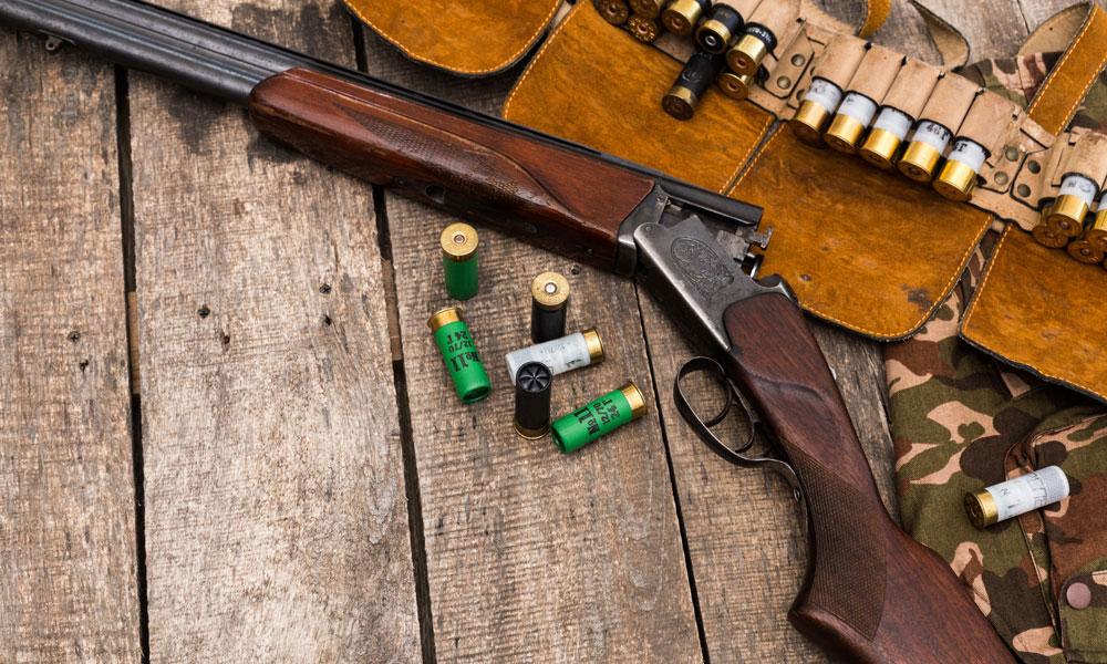 hunting-ammo-rifle-gun