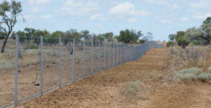 Fencing funding for invasive pest species