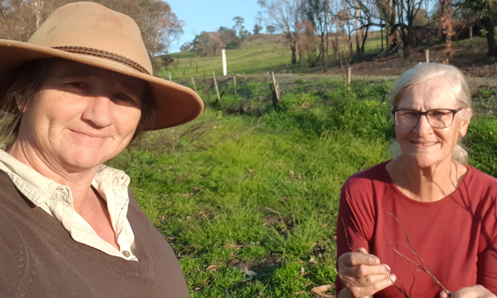 Project Officer Kylie Durant from Holbrook Landcare (l) with Juliet Cullen from Mountain Landcare looking at burnt vegetation