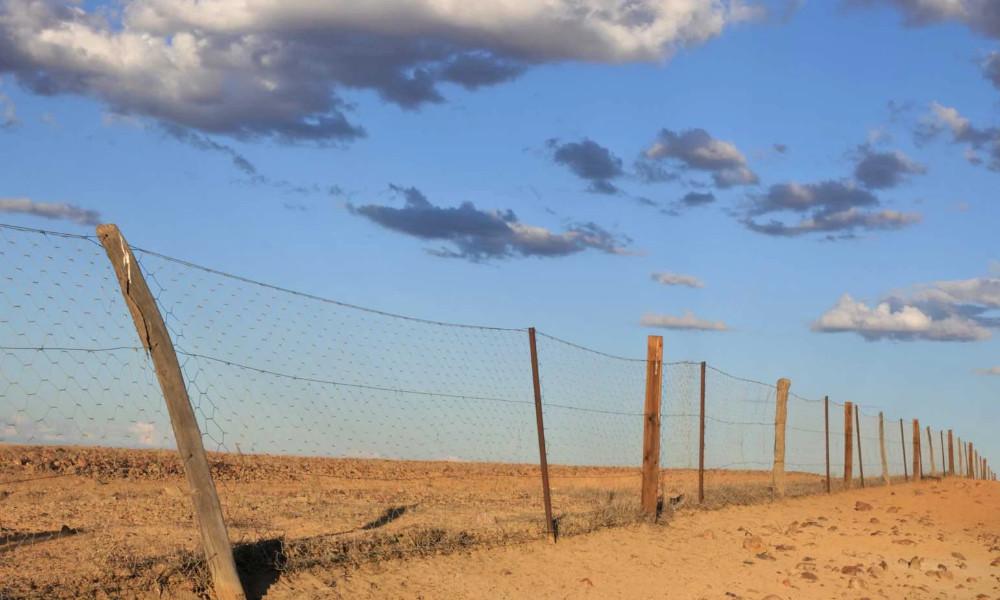WA wild dog fence