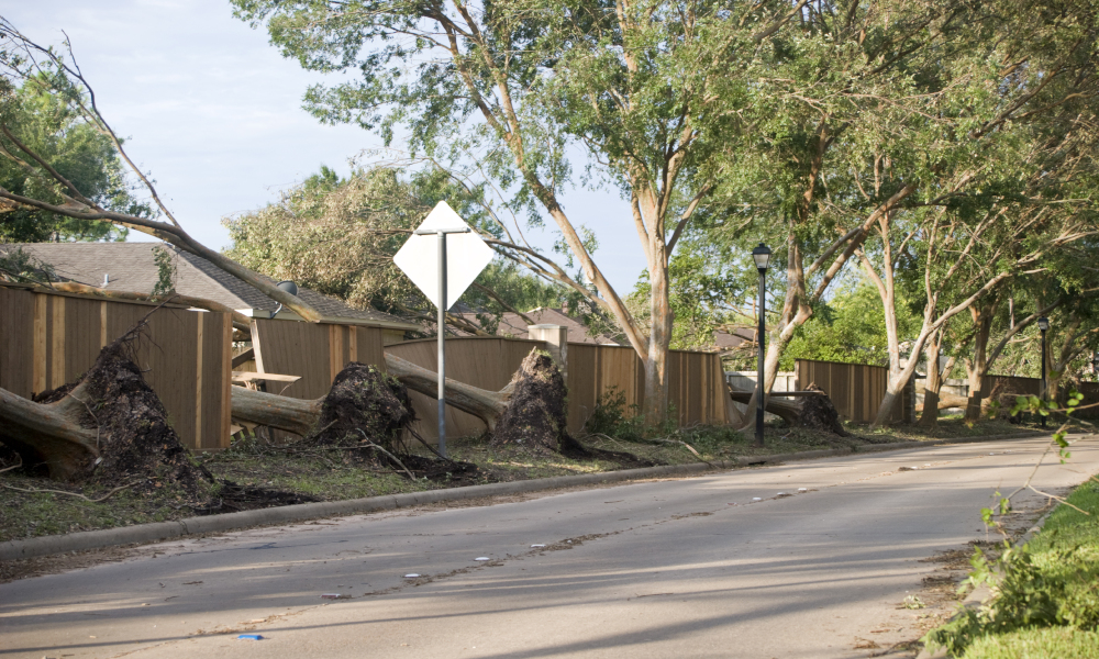 Disaster Assistance Extended Following Storms and Floods in NSW