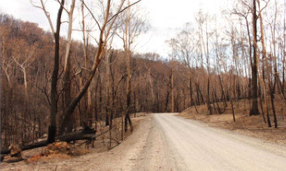 NSW Coronial Inquiry into 2019-20 bushfire season